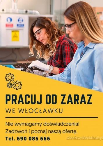 Praca we Włocławku od zaraz!